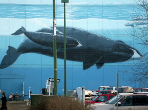 Wyland Mural
